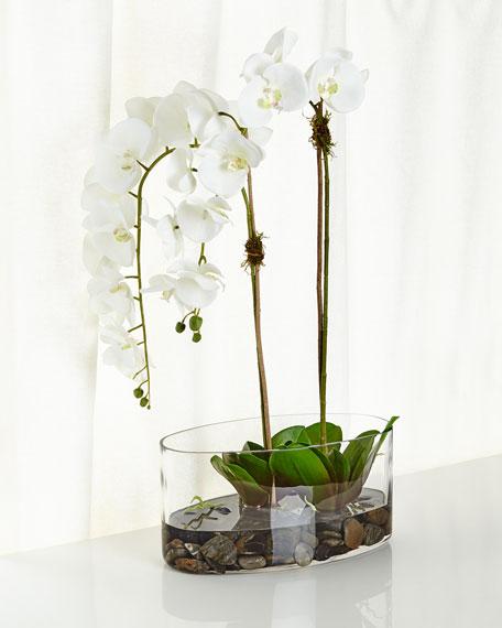 Orchids in Glass Faux-Floral Arrangement
