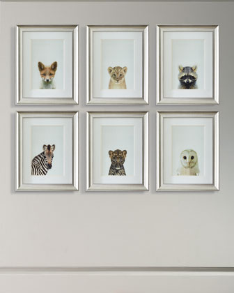 Framed Baby Animal Photography Print Framed Art